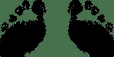 Stroll in Godiva's Footsteps