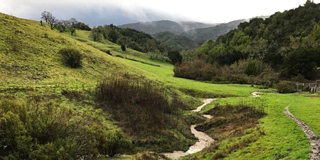 "Volunteer Outdoors in Los Altos Hills: Join ""Byrne Brigade"" for Habitat Restoration at Byrne Preserve tickets"