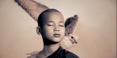 Meditazioni per il risveglio della coscienza