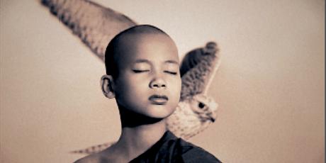 Meditazioni per il risveglio della coscienza biglietti