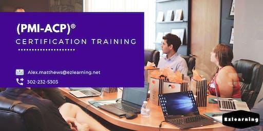 PMI-ACP Classroom Training in Fort Saint John, BC
