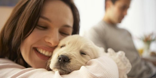 Volunteer with Project Helping to Give Love to Animals in Need (The Humane Society of Tampa Bay)