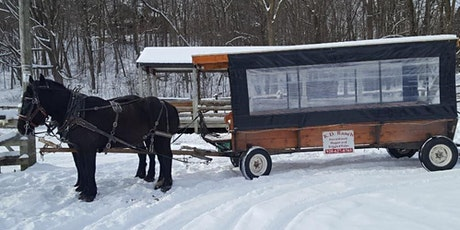 Booze and Cruise- Horse Drawn Rides + Wine and Cheese Tasting tickets