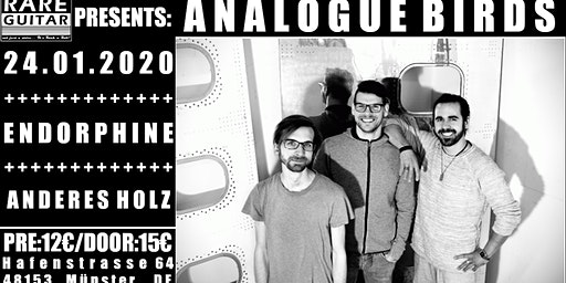 Analogue Birds + Endorphine + Anderes Holz