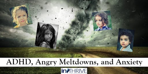 ADHD, Angry Meltdowns, and Anxiety: Addressing the Cause The Perfect Storm Workshop