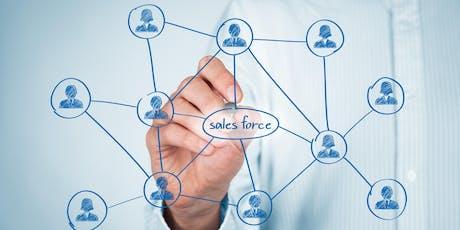 Salesforce.com: Administrator (Lightning) Class | White Plains, New York tickets