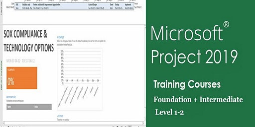 Managing Projects using MS.Project 2019