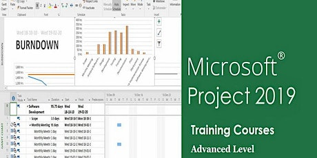 Advanced Microsoft Project Training Course- MS.Project 2019 tickets