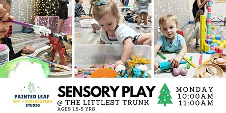 Sensory Play tickets