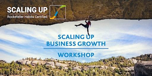 Scaling Up Business Growth Workshop - Sydney - November 19, 2020
