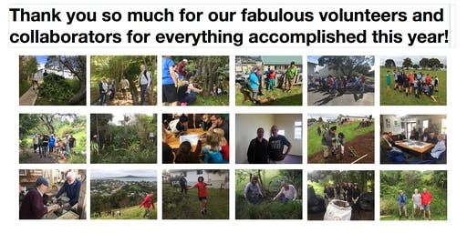 Restoring Takarunga Hauraki - End-of-year and volunteer celebration!