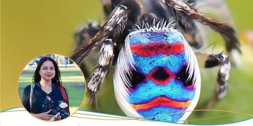 Magical Mini Beasts: Inside the World of Bunbury's Bugs