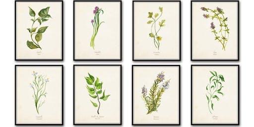 Tea & Crafting Sundays :: Watercolor Botanical Illustration (all ages & levels)