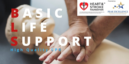 Basic Life Support Heart and Stroke Foundation Course
