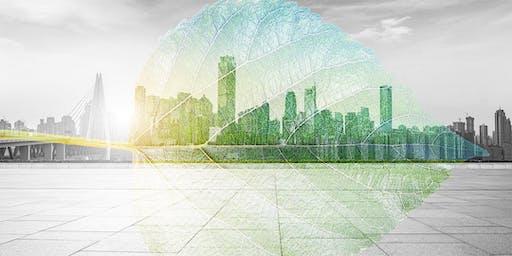 Bancos verdes: Modelo de éxito en la financiación de cambio climático