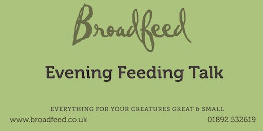 Evening Feeding Talk