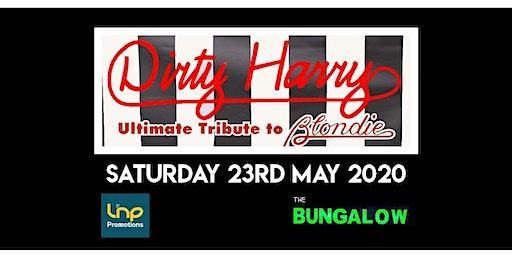 Blondie Tribute - Dirty Harry in Paisley