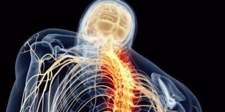 Motor Learning, Pain and Functional Magnetic Resonance Imaging of the Spinal Cord in Humans tickets