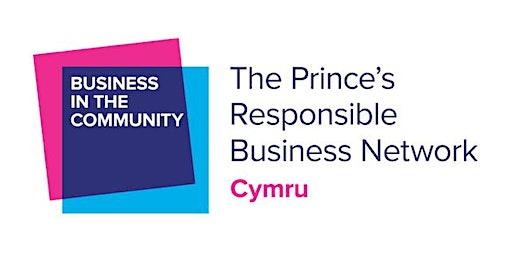 Wales Responsible Business Awards Workshop - Swansea