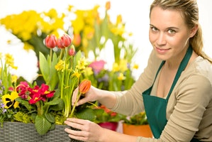 Flower Arranging: An Eco-Friendly Approach - Kirkby in Ashfield Library  CL