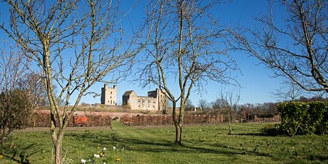 Winter Pruning of Apple Trees tickets
