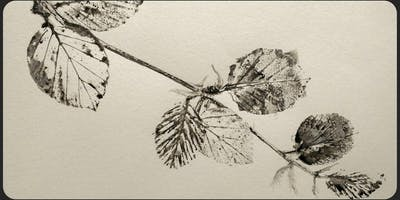 Botanical Art from the Very Beginning
