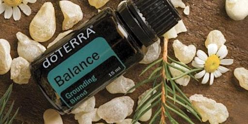 Balancing Hormones Workshop No. 2 - The Natural Path to Wellness