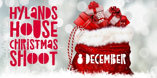Hylands House Christmas Photoshoot!