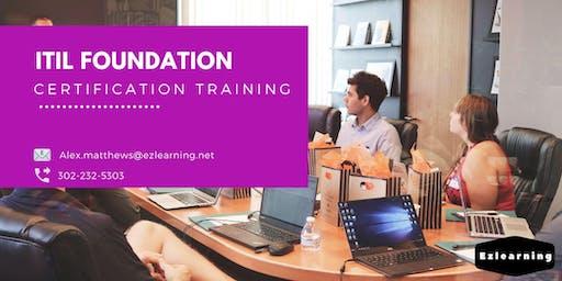 ITIL Foundation Certification Training in La Crosse, WI