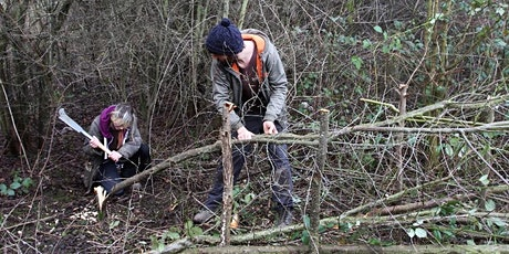 Introduction to Woodland Management Workshop tickets