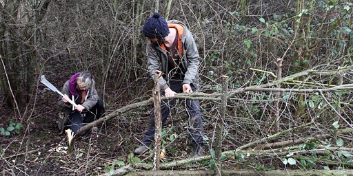 Introduction to Woodland Management Workshop