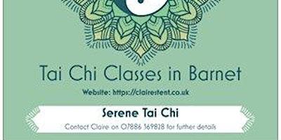 Tai Chi Workshop - 25 Jan 2020 - New Barnet