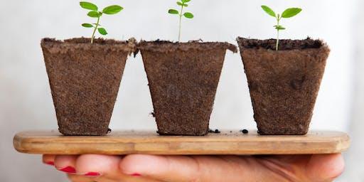 Entfalte Dein volles Potenzial! Wachstumsperspektiven in der Selbständigkeit