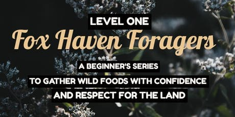 Fox Haven Foragers Level 1 [Whole Series & Single Date Tickets available] tickets