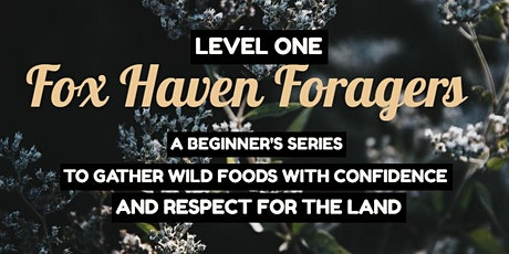 Fox Haven Foragers Level 1 [Whole Series & Single Date Tickets available] SOLD OUT tickets