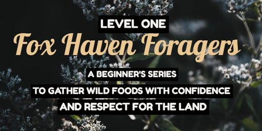 Fox Haven Foragers Level 1 [Whole Series & Single Date Tickets available]