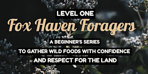 Fox Haven Foragers Level 1 [Whole Series & Single Date Tickets available] SOLD OUT