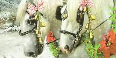 Horse Drawn Carriage   Christmas Tour of Lights tickets