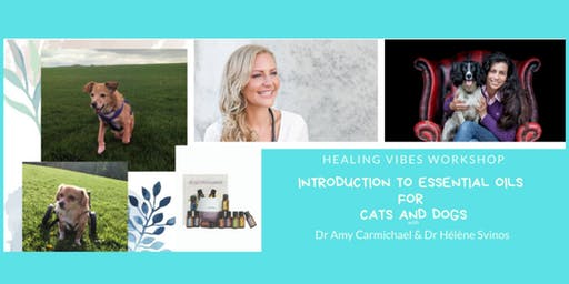 Introduction to Essential Oils for Cats and Dogs
