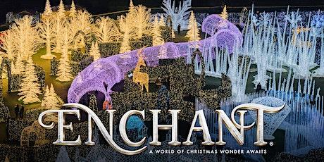Enchant Christmas - World's Largest Christmas Light Maze & Market tickets
