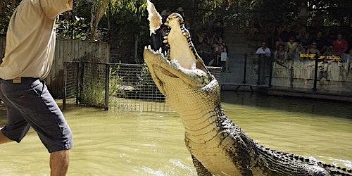 Hartley's Crocodile Adventures from Cairns