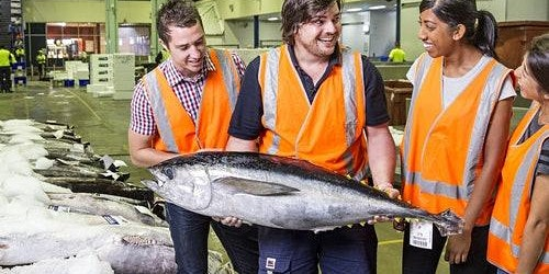 Sydney Fish Market: Behind-the-Scenes Auction Floor Tour