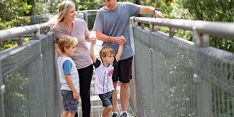 Illawarra Fly Treetop Walk tickets