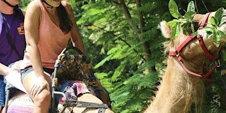 Yaaman Adventure Park: Full Hundred Package tickets