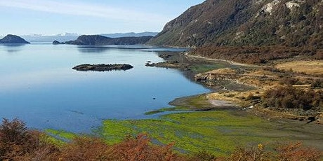 Tierra del Fuego National Park: Half Day Tour from Ushuaia entradas