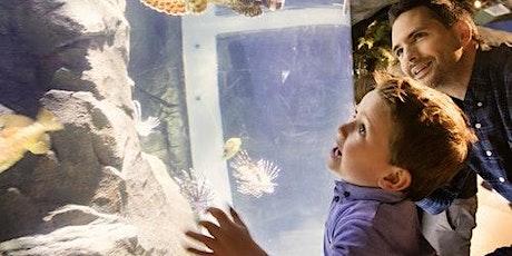 Exploris Aquarium tickets