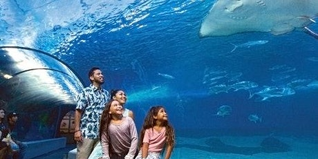 Maui Ocean Center tickets