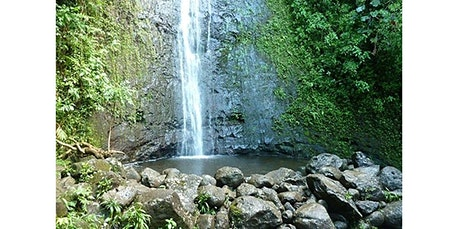 Manoa Falls Ride & Hike (2020-01-17 starts at 2:30 PM) tickets