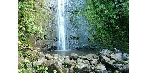 Manoa Falls Ride & Hike (2019-12-07 starts at 8:00 AM)