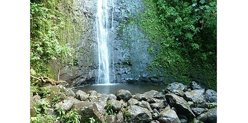 Manoa Falls Ride & Hike (2020-02-14 starts at 2:30 PM)